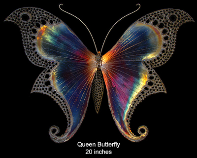 Queen Butterfly, 20 inches wide